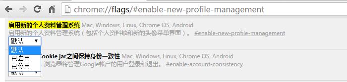 让Google Chrome更加安全的运行:保护Chrome中的账户资料的两种方法
